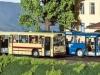 Brekina-Busse O 305 und O 307 mit geöffneten Türen • Foto: cw