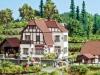 Weingut Hauser-Bühler aus Bickensohl (Kaiserstuhl) von Noch