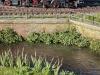 Realistisches Gewässer an der Strecke | Foto: Arnold Humer